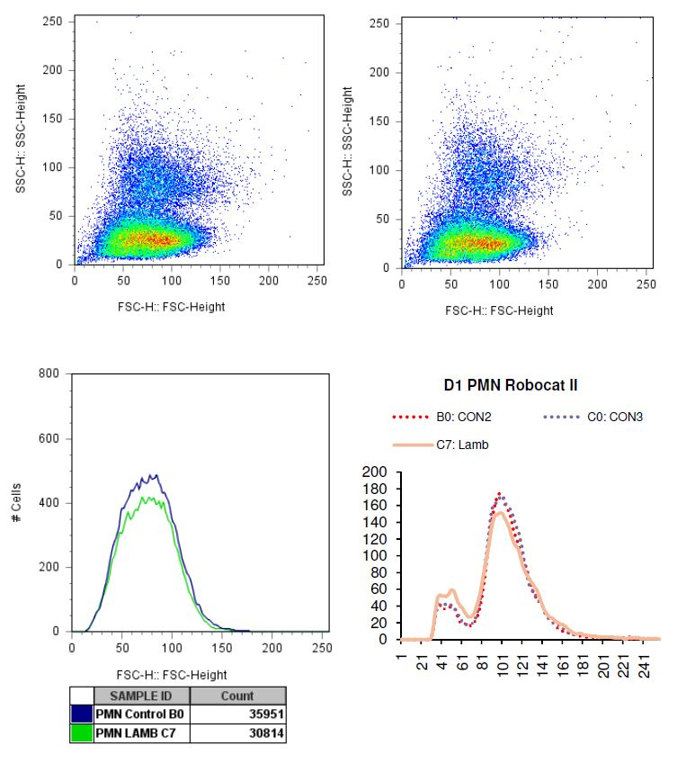 Charted results of donor 1 Polymorphonuclear (PMN) cells when exposed to lamb