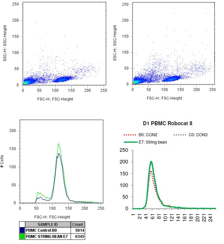 Charted results of donor 1 peripheral blood mononuclear cells (PBMC) when exposed to string bean