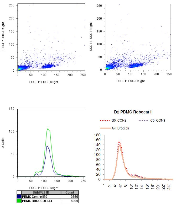 Charted results of donor 2 peripheral blood mononuclear cells (PBMC) when exposed to broccoli