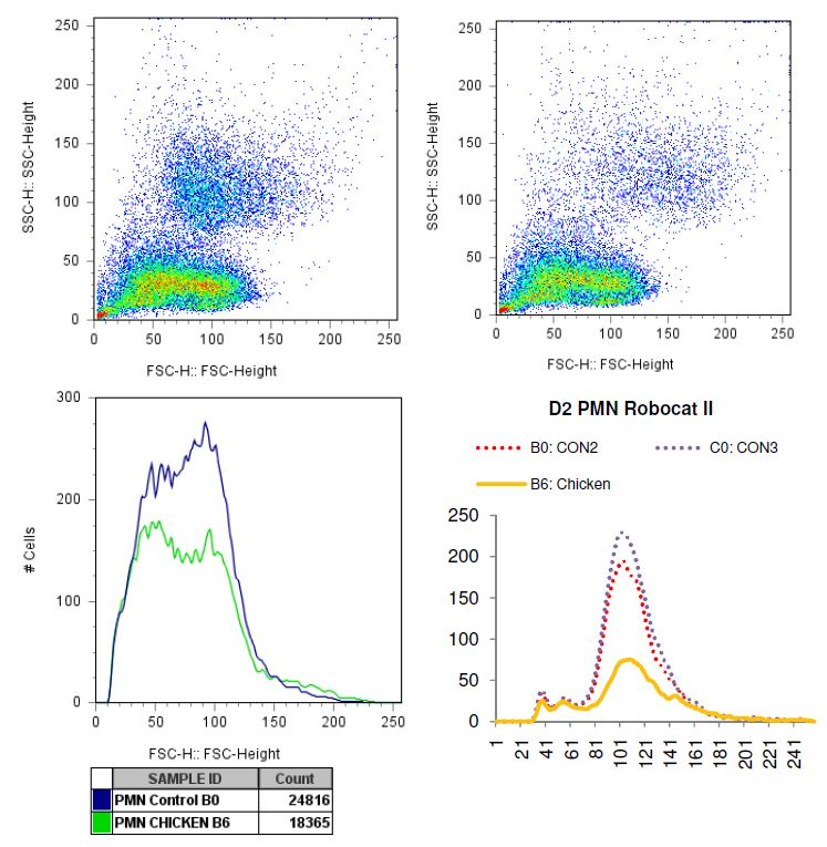 Charted results of donor 2 polymorphonuclear (PMN) cells when exposed to chicken