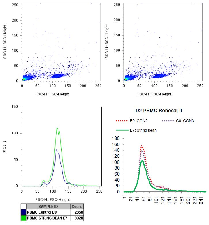 Charted results of donor 2 peripheral blood mononuclear cells (PBMC) when exposed to string bean