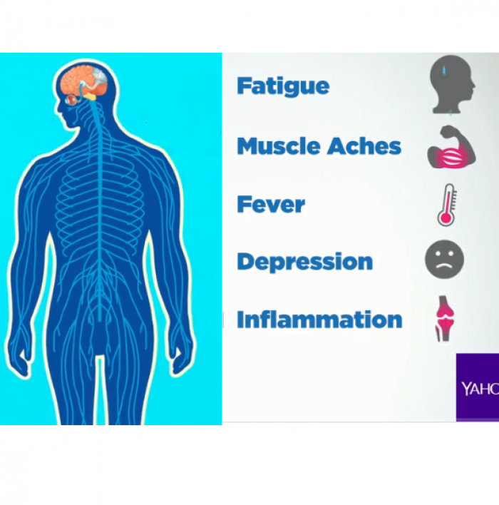 Yahoo Lifestyle, Autoimmune Disease, Diet